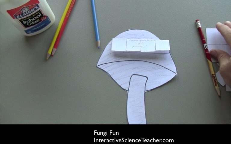 Fungi science lesson- cut, color, glue, and write notes on this paper fungi